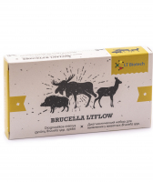 Rapid test kit for Brucellosis detection «Brucella LTFLOW»